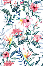Watercolor Tropical Floral Pattern, Delicate Flower Wallpaper, Wildflowers Pink,tansy, Pansies.