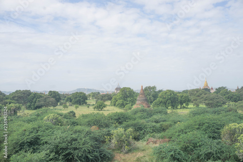 Foto op Aluminium Olijf Bagan landscape