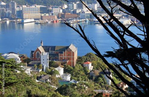 Beautiful View over Church in Wellington, New Zealand - Buy