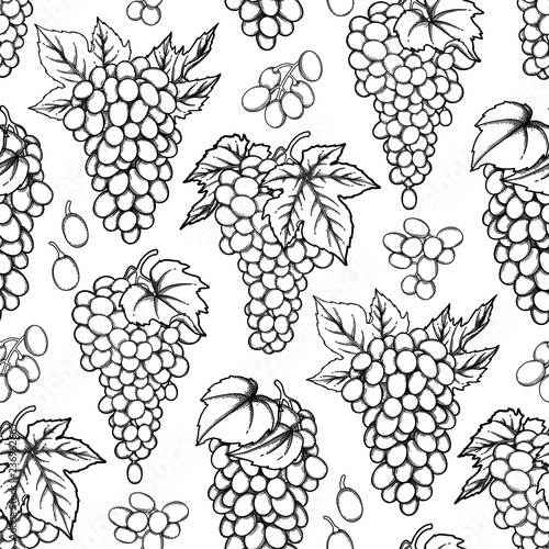 Graphic seamless pattern of vector grapes bunches Fototapete