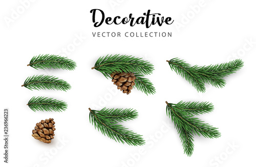 Tablou Canvas Set of green decorative fir branches with cones isolated on white for Christmas and New Year design