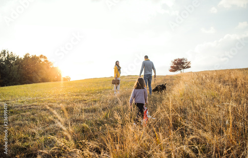 Foto op Canvas Jacht A rear view of family with child and a dog on a walk in autumn nature at sunset.