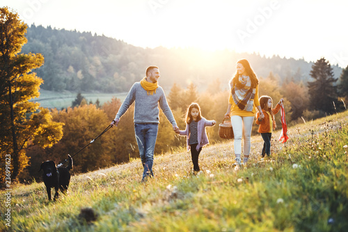 Obraz A young family with two small children and a dog on a walk on a meadow at sunset. - fototapety do salonu