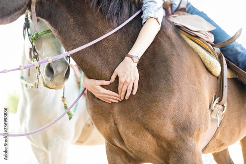 Fotografie, Obraz  Cropped Woman Forming Heart Shape On Horse