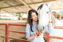 Woman Taking Care Of Horse Nutrition