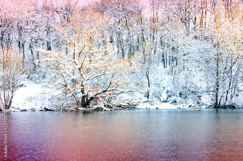 Winter landscape with snow covered trees and forest lake.