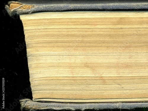 Yellowed pages of the old dilapidated book. Old book. Canvas Print