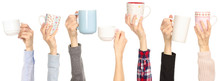 Many Different Arms Hands Raised Up Holding Cup Mug On White Background Isolation