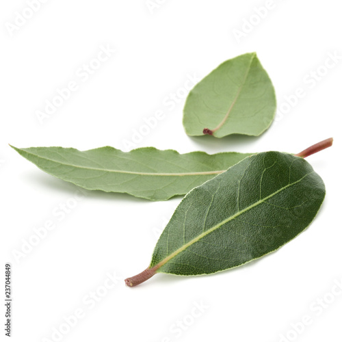 Fotobehang Aromatische Aromatic bay leaves