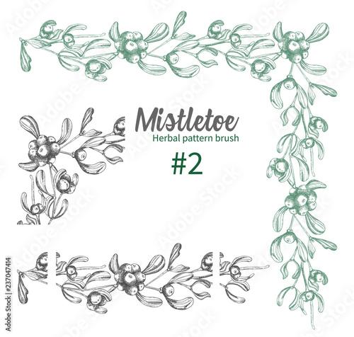 Fotografie, Obraz  Set of hand drawn botanical sketch mistletoe branches