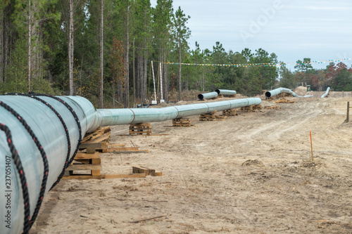 Fototapeta New natural gas pipeline construction,Gilchrist County Florida obraz