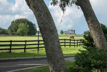 Estate Home With Horse Pasture, Florida