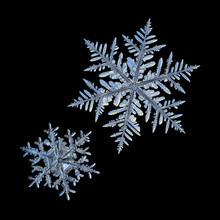 Two Snowflakes Isolated On Bla...