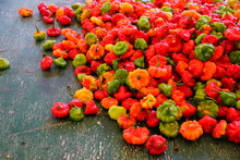 View Of Red And Green Scotch Bonnet Peppers At A Caribbean Market