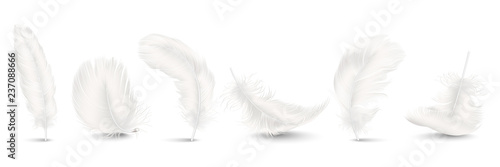 Vector 3d Realistic Different Falling White Fluffy Twirled Feather Set Closeup Isolated on White Background Canvas-taulu