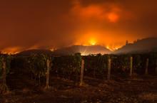 Fire In Sonoma Hills