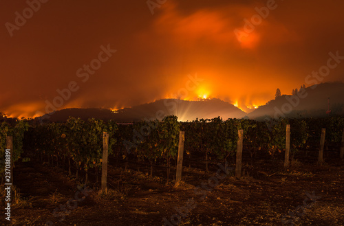 Photo sur Toile Rouge mauve Fire in Sonoma Hills