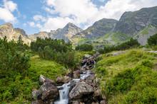 SMall Stream At The Tatra Nati...