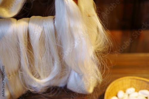 Photo 絹糸の原料