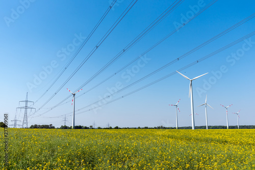 Fotografie, Obraz Field of rapeseed with high-voltage lines and wind turbines in the back seen in