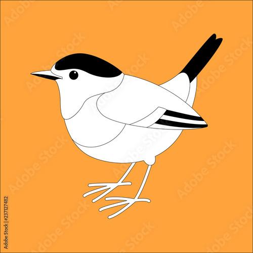 Tuinposter Sprookjeswereld robin bird vector illustration, lining draw ,profile