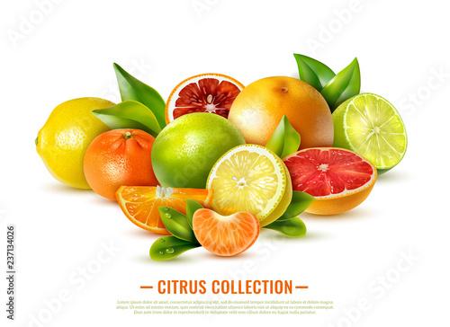 Foto Realistic Citrus Fruit Illustration
