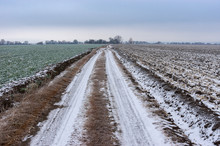 Landscape With An Earth Road Between Agricultural Fields Covered By First Snow In Ukraine At Late Autumnal Season