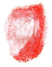 Red Fingerprint Isolated On White Background