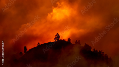 Hill with trees about to burn in red, orange wildfire Wallpaper Mural