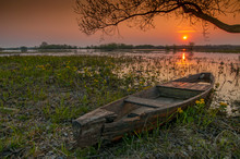 Sunrise Landscape At Biebrza National Park, Poland.