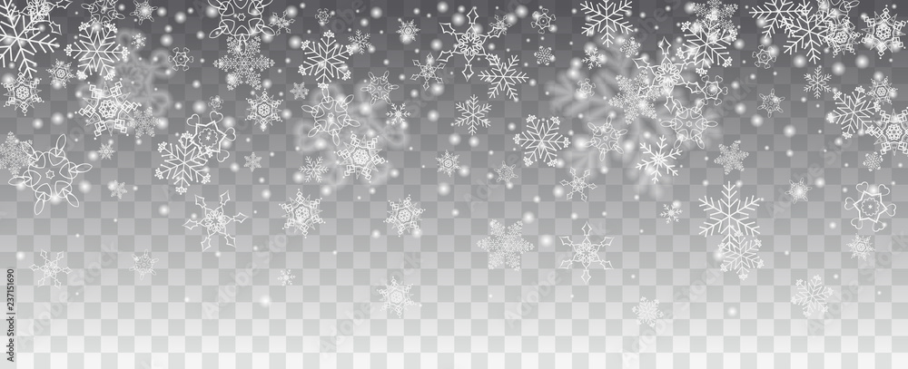 Fototapeta Vector snowfall, snowflakes of various shapes. Many white cold flaky elements on transparent background. White falling fly in the air.