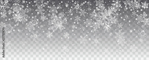 Obraz Vector snowfall, snowflakes of various shapes. Many white cold flaky elements on transparent background. White falling fly in the air. - fototapety do salonu