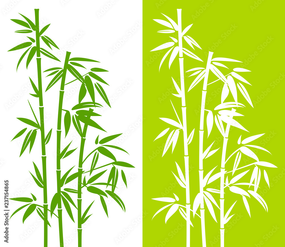 Bamboo Duo Green