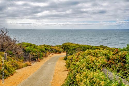 Foto op Plexiglas Oceanië A favorite surfing spot on the Australian Pacific coast in Apollo Bay.