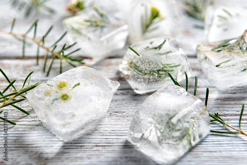 obraz lub plakat Plants frozen in ice cubes on light wooden background