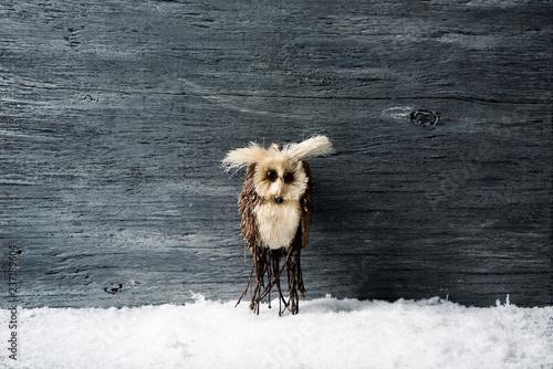Valokuva  owl on the snow