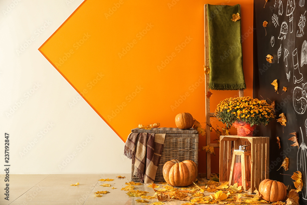Fototapeta Beautiful autumn composition with pumpkins and leaves near color wall