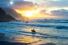 Man Horse Riding On Sunset Beach