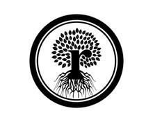 R Tree Logo