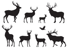 Silhouettes Of Different Deers...