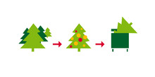Christmas Tree Life Cycle Flat...
