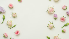 Rose Buds Mix On White Backgro...