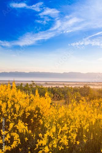 Fotografie, Obraz  Croatia, Dalmatia, Velebit mountain ridge and misty fields in foreground, su