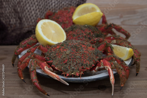 fresh seafood with lemon, spider crabs