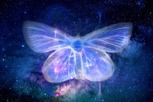Abstract Artistic Energy Field Butterfly Shape In Space Background