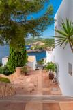 Fototapeta Na drzwi -     Ibiza, typical houses, staircase with view on the sea