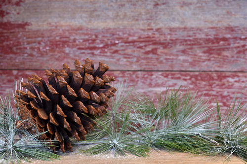 Fotografie, Obraz  a pine cones with a red barn board background