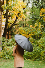 Young Woman With A Black Umbrella In Autumn Scene. From The Back.