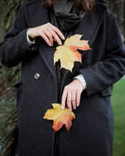 Faceless Model With Colorful Leaves