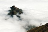 An adventurous male traveler looks out over a mountain peak rising above a thick layer of clouds in Chile's Parque Nacional La Campana - 237292212